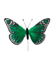 LARGE FEATHER BUTTERFLIES - GREEN - Green