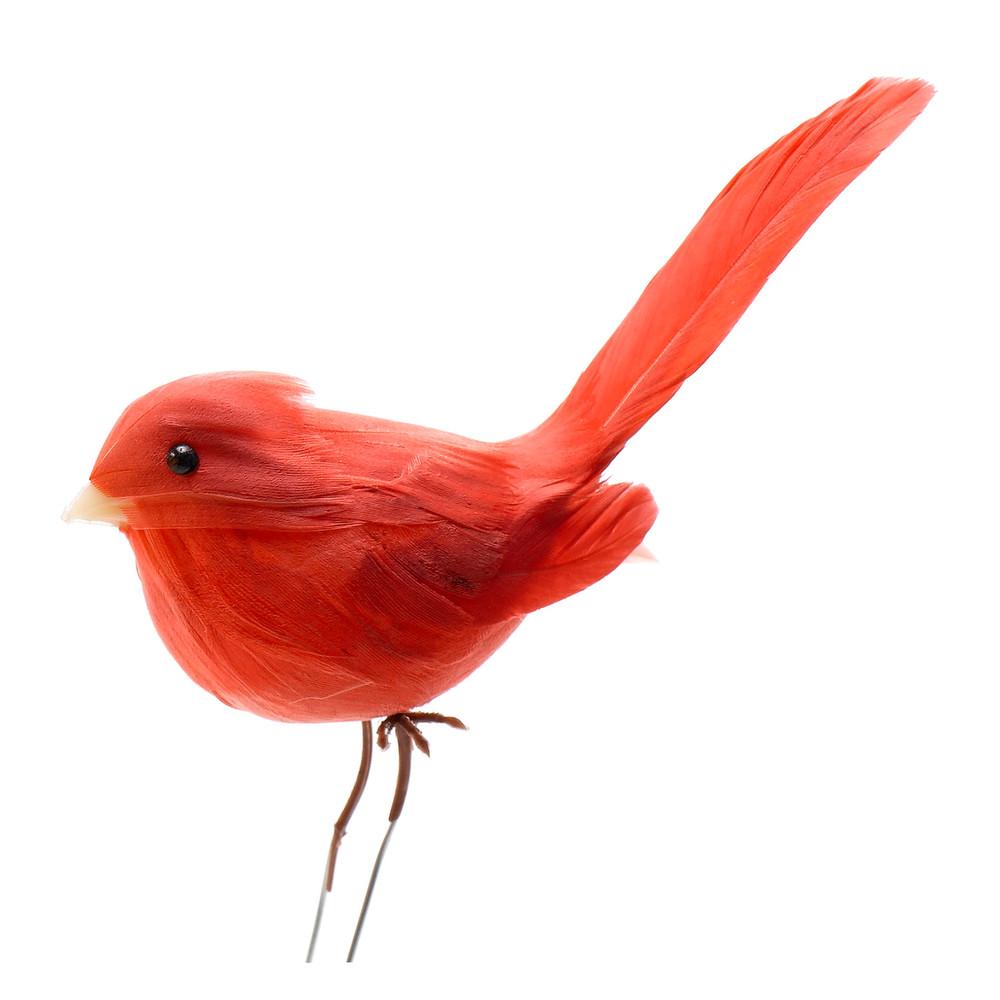 PERCHED BIRDS   DZD