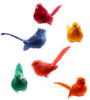 PERCHED BIRDS - Multi