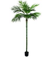 Areca Palm Tree 210cm - Green