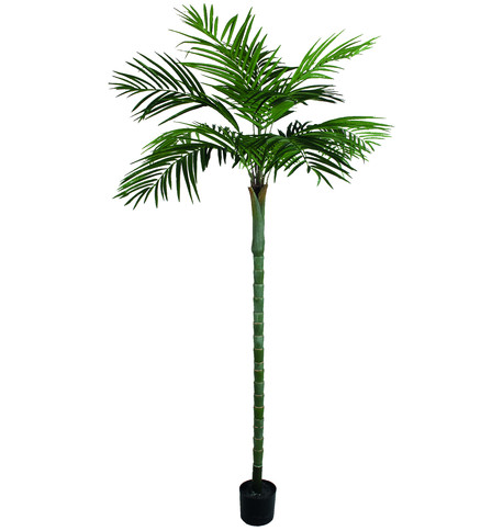 Areca Palm Tree - 210cm Green