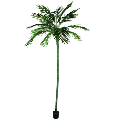 Areca Palm Tree - 270cm Green