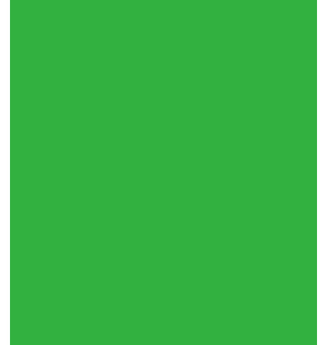 PVC  - LIME Lime