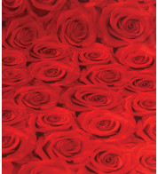 ROSES PHOTOPRINT FABRIC - Red
