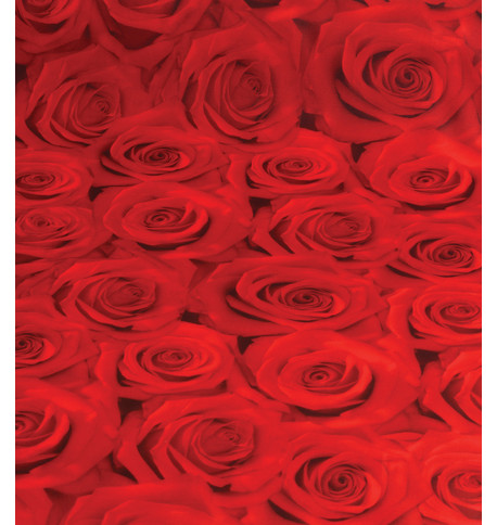 ROSES PHOTOPRINT FABRIC Red