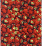 STRAWBERRY PHOTOPRINT FABRIC - Red