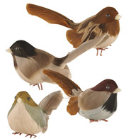 WOODLAND BIRDS ASSORTED - Brown