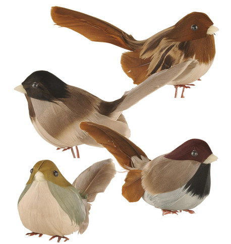 WOODLAND BIRDS ASSORTED Brown