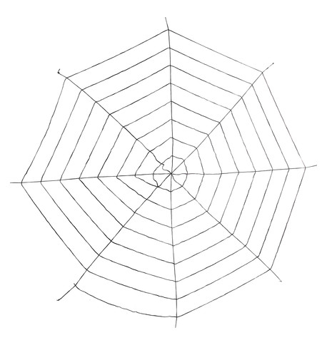 giant spider web - Black Black
