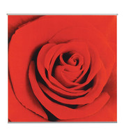 SCARLET TEXTILE POSTER KIT - Red