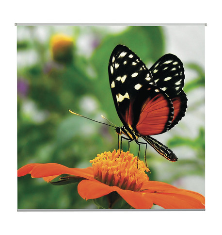 BUTTERFLY TEXTILE POSTER Orange