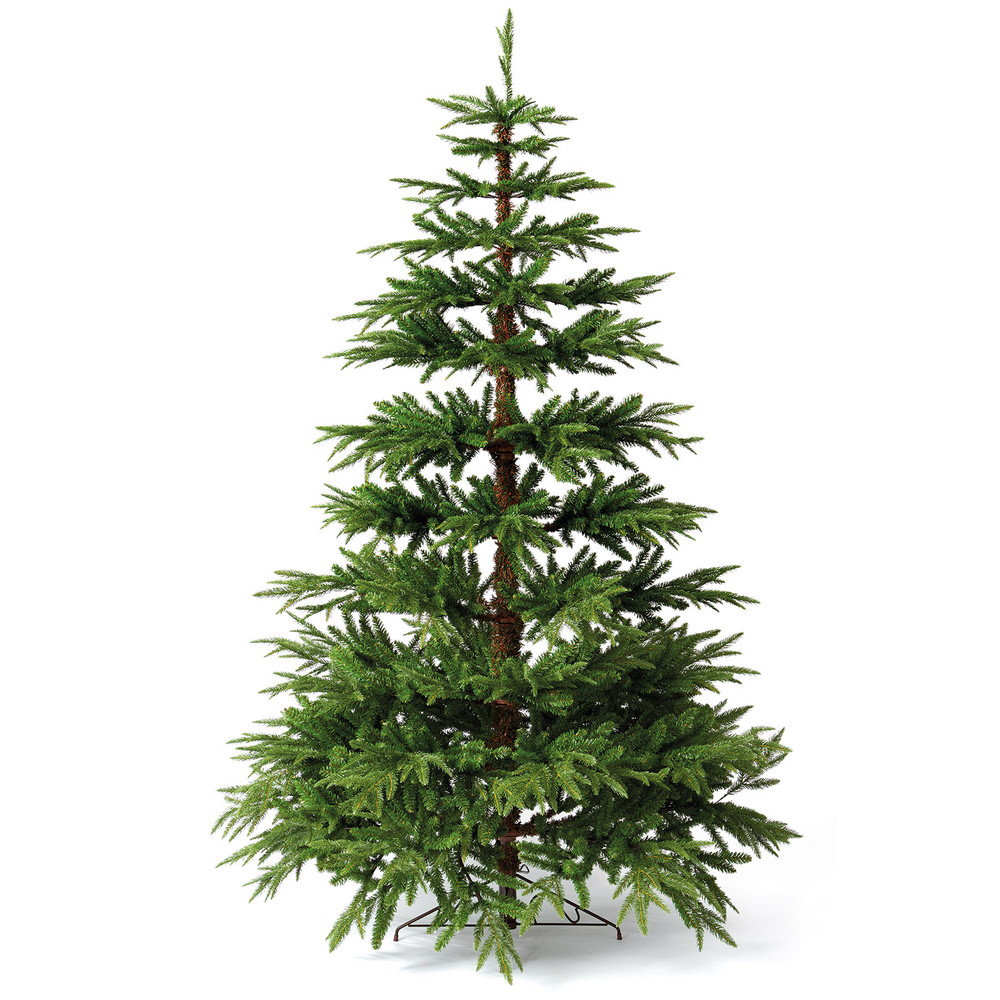 woodland pine tree dzd