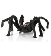 Furry Legged Spider - Black