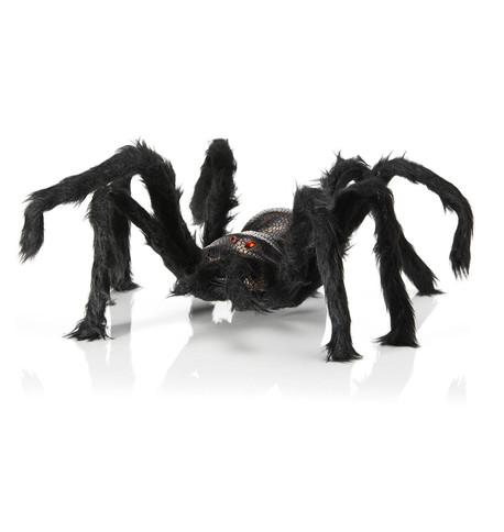 Furry Legged Spider Black