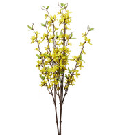 Forsythia Spray - Yellow
