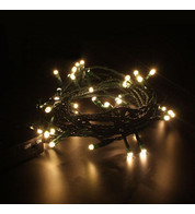 Indoor Battery Powered Fairy Lights - Static Warm White on Green Cable - Warm White