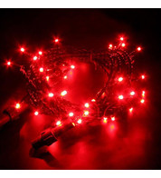 Indoor LED String Lights Static Red on Green Cable - Red