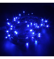 Indoor LED String Lights - Flashing Blue on Green Cable - Blue