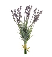 Lavender Bunch - Lilac