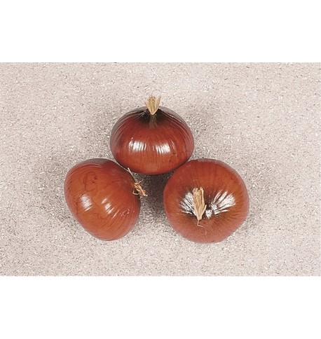 Artificial Onions - Pack of 3 Brown