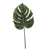 Split Philodendron Leaf - Green