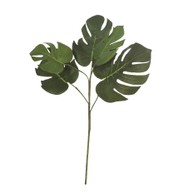 Split Philodendron Branch - Green