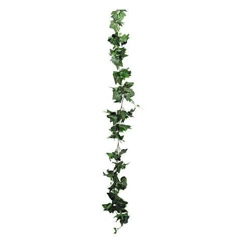 Ivy Garland Green