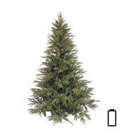 Pre Lit Battery Powered Colorado Pine Tree - Green
