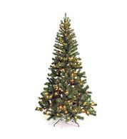 Pre Lit Nordmann Tree - Available 14 Sept - Green