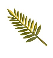 Gold Display Palm Leaf - Gold
