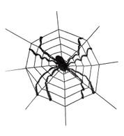 Large Spider on Web - Black