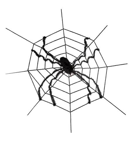Large Spider on Web Black