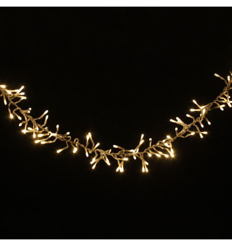 Elements Range Cluster Lights Warm White on Clear Cable