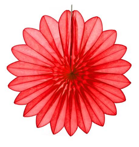 Daisy Fan - Red Red