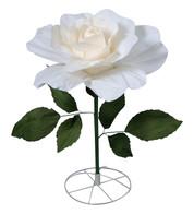 LARGE PARCHMENT ROSE - CREAM - Cream