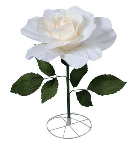 LARGE PARCHMENT ROSE - CREAM Cream