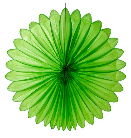 FLOWER FAN - GREEN Green