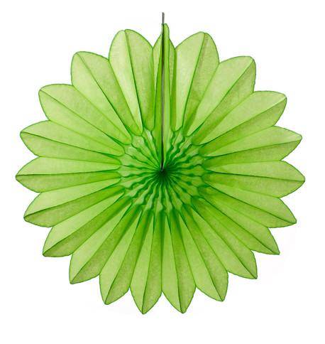 DAISY FAN - GREEN Green
